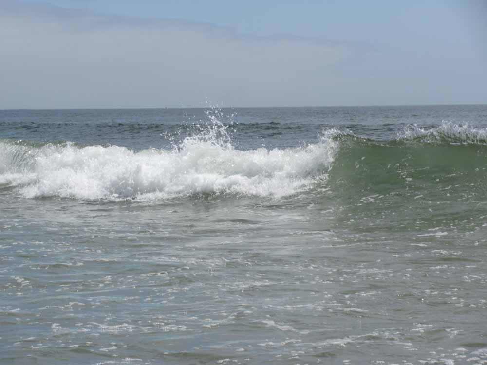 Matosinhos, day at the ocean15