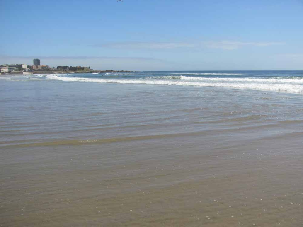 Matosinhos, day at the ocean22