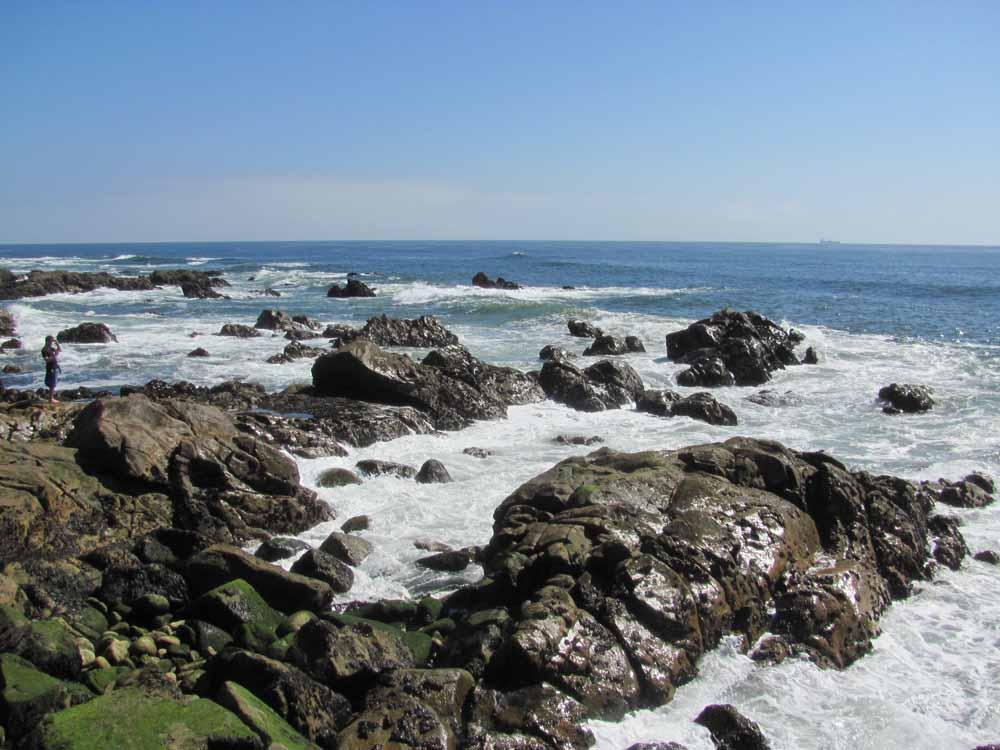 Matosinhos, day at the ocean45