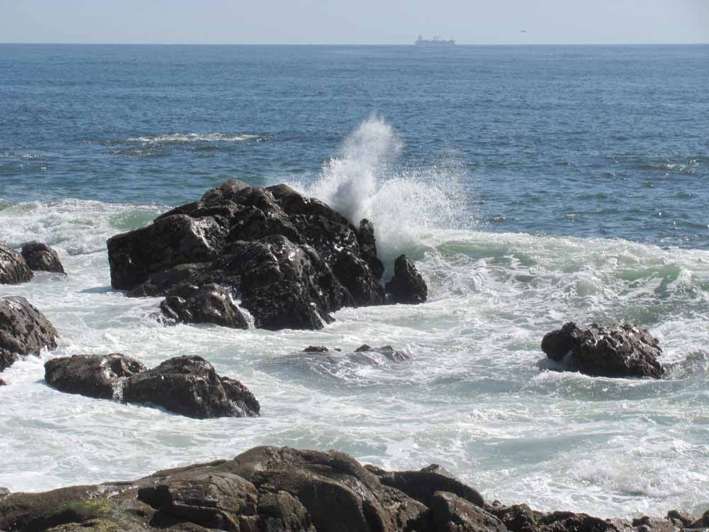 Matosinhos, day at the ocean46