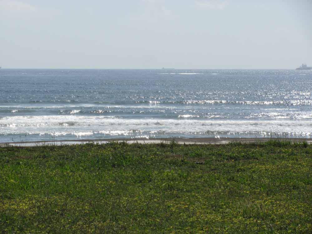 Matosinhos, day at the ocean48